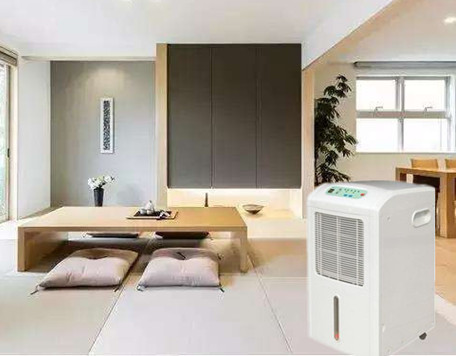 7 Healthy Reasons To Get A Dehumidifier For Home
