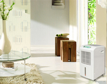 How to Choose A Dehumidifier for your Basement